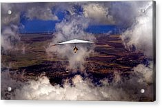 Soaring Through The Clouds Acrylic Print