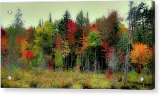 Acrylic Print featuring the photograph Soft Autumn Panorama by David Patterson