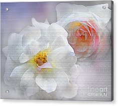 Soft Roses Acrylic Print by Robert Foster