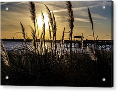 Acrylic Print featuring the photograph Soft Wind by Eric Christopher Jackson
