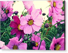 Softly Blowing Acrylic Print by Cathie Tyler