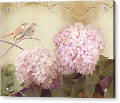 Softly Summer - Carolina Wrens W Blush Pink Hydrangeas Acrylic Print
