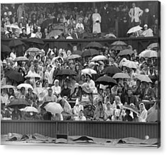 Soggy Supporters Acrylic Print by Ron Stone