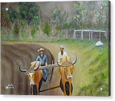 Sol Tierra Y Sudor Acrylic Print by Guito