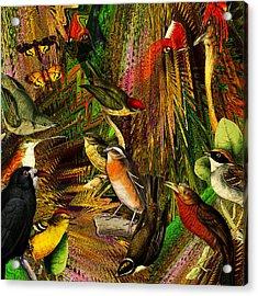 Solar Birds Of Paris Acrylic Print
