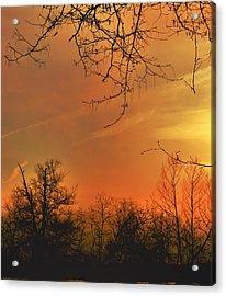 Solara Acrylic Print