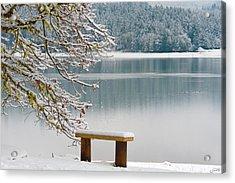 Solitary Snowscape Acrylic Print