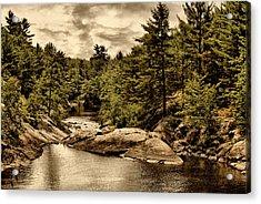 Solitary Wilderness Acrylic Print