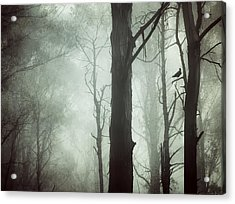 Acrylic Print featuring the photograph Solitude by Amy Weiss
