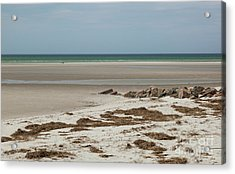 Acrylic Print featuring the photograph Solitude By The Seashore by Michelle Wiarda