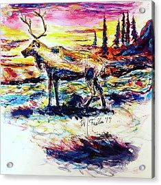 Solitude Caribou Acrylic Print