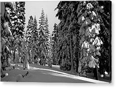 Solitude Acrylic Print by Kathy Yates