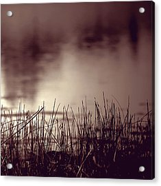 Acrylic Print featuring the photograph Solitude by Trish Mistric