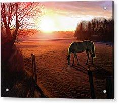 Solstice Sunrise Acrylic Print