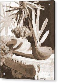 Sombras Acrylic Print by George I Perez