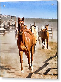 Acrylic Print featuring the digital art Sombrero Ranch Horse Drive, Galloping Into The Dusty Corrals by Nadja Rider