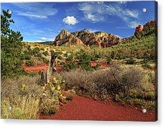 Some Cactus In Sedona Acrylic Print by James Eddy