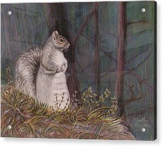 Some Nutty Guy Acrylic Print by Martha Ayotte