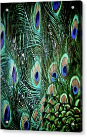 Someone Is Watching You Acrylic Print by Odd Jeppesen