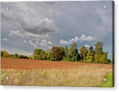 Acrylic Print featuring the photograph Somerset Sky 3069 by Guy Whiteley