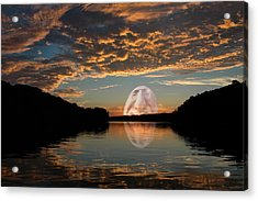 Something In My Coffee Acrylic Print by Ross Powell