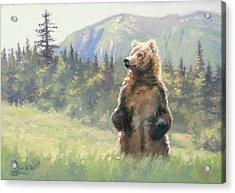 Something In The Air- Alaskan Brown Bear Acrylic Print by Larry Seiler