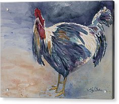 Something To Crow About Acrylic Print by Mary Benke