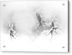 Song Of The Angels Acrylic Print by Bill Cannon
