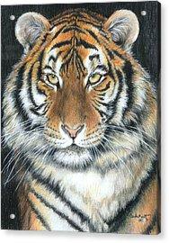 Songha Acrylic Print