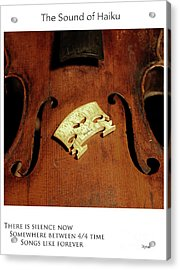 Songs Like Forever  Acrylic Print by Steven Digman