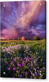 Songs Of Days Gone By Acrylic Print by Phil Koch