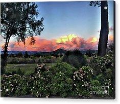 Sonoma County Sunsets Acrylic Print