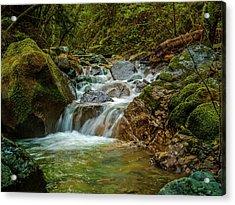 Sonoma Valley Creek Acrylic Print by Bill Gallagher