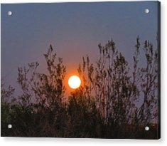 Sonoran Desert Harvest Moon Acrylic Print