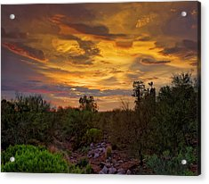 Acrylic Print featuring the photograph Sonoran Sonata H01 by Mark Myhaver
