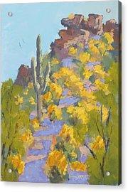 Sonoran Springtime Acrylic Print