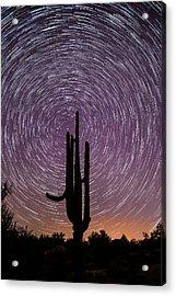 Sonoran Star Trails Acrylic Print