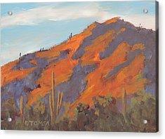 Sonoran Sunset - Art By Bill Tomsa Acrylic Print