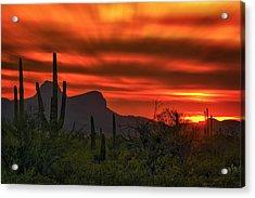 Sonoran Sunset H38 Acrylic Print