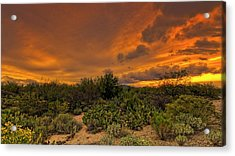 Acrylic Print featuring the photograph Sonoran Sunset H4 by Mark Myhaver