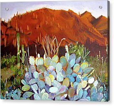Sonoran Sunset Acrylic Print by Julie Todd-Cundiff