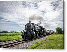 Acrylic Print featuring the photograph Soo 1003 At Darien by Randy Scherkenbach