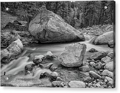 Soothing Colorado Monochrome Wilderness Acrylic Print by James BO Insogna