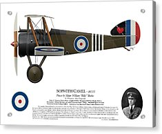 Sopwith Camel - B6313 June 1918 - Side Profile View Acrylic Print by Ed Jackson
