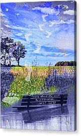 Sorry About The Mess Acrylic Print by Cathy  Beharriell