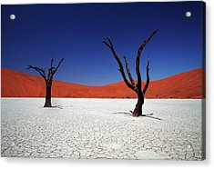 Sossusvlei In Namib Desert, Namibia Acrylic Print