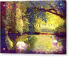 Swans, Soul Mates Acrylic Print