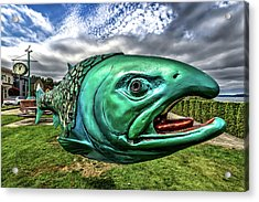 Soul Salmon In Hdr Acrylic Print by Rob Green