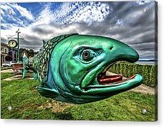 Soul Salmon In Hdr Acrylic Print
