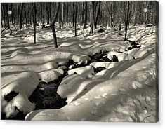 Acrylic Print featuring the photograph Sourland Mountains 4 by Steven Richman